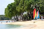 Plage de la côte ouest de la Barbade