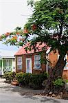 Barbados, traditional house