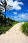 Barbade, plage de Silver Sands