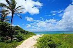 Barbados, Silver Sands Strand