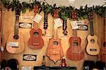 United States, Hawaii, Oahu island, ukulele