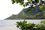 États-Unis, Hawaï, l'île Oahu, Kahana bay