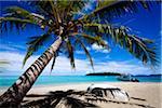 Rowboat on Beach, Mounu Island Resort, Vava'u, Kingdom of Tonga