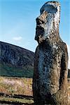 Un seul moai remarquable se trouve d'un côté des célèbres quinze statues de Pierre colossales ou moais de Tongariki sur leur plate-forme ou ahu sur la côte orientale de l'île, au pied de la péninsule de Poike. Ahu Tongariki est la plus grande plate-forme de l'île à plus de 200 m de long et a la plupart IMAO.