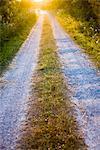 Gravelled road at sunset, Sweden.