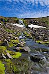 Creek, Trekyllisheidi, Westfjords Region, Iceland