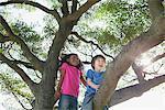 Enfants sur un arbre
