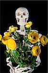 Un squelette tenant un bouquet de fleurs de renoncules jaunes