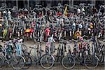 Eine große Gruppe von abgestellten Fahrrädern
