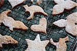 Detail of cookies on a rack