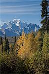 Vue panoramique southside de dent et la chaîne de l'Alaska vu depuis la route de George Parks, parc d'état de Denali, Alaska du centre-sud, l'automne de l'orignal
