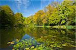 Pond at Wallington Hall, Northumberland, England