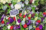 Blumen auf dem Display in den Bloemenmarkt (Blumenmarkt), Amsterdam, Niederlande, Europa