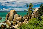 Granite rocks and palm trees, Mahe, Seychelles, Indian Ocean, Africa