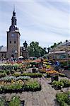 Square Stortorvet avec le marché aux fleurs et la cathédrale (cathédrale), Oslo (Norvège), Scandinavie, Europe