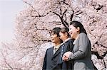 Japanische Familie unter blühenden Kirschbäumen