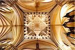 L'Angleterre. La voûte détaillée de la cathédrale de Lincoln.