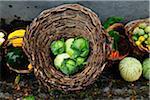 Still life with vegetables at Quinta do Martelo. Sao Mateus, Terceira, Azores islands, Portugal