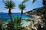 Cala Fornells, Majorque, îles Baléares, Espagne
