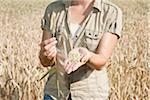 Woman in Wheat Field, Mannheim, Baden-Wurttemberg, Germany