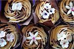 Kaffee Blütenblatt Cupcakes