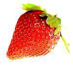 Strawberry close up