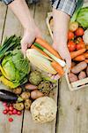 Beaucoup de légumes différents.