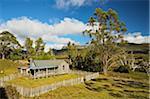 MT Kate Hut, Cradle Mountain-Lake St Clair National Park, Tasmania, Australie