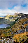 À feuilles caduques de hêtres et de Dove Lake, Cradle Mountain-Lake St Clair National Park, Tasmania, Australie