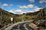 Route à travers le Parc National de Cradle Mountain-Lake St Clair, UNESCO World Heritage zone, Tasmania, Australie