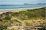 Walkway, Bruny Island, Tasmania, Australia