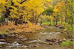 Barwidgee creek, Myrtleford, Victoria, Australie