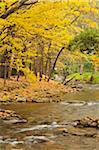 Barwidgee Creek, Myrtleford, Victoria, Australien
