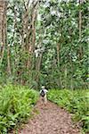 Touriste, Jozani Chwaka Bay National Park, Unguja, à Zanzibar