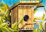 Nesting box for birds - Highly detailed cartoon background 40 - illustration