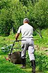 Man working in the garden - cutting the grass