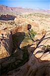 Aerial of desert canyon landscape in Utah, USA.