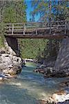 Wooden bridge cross a river flowing between rocks in a Dolomites wood