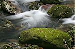 Stream of water. Long exposure.