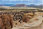 Acoma Pueblo, Cibola County, New Mexico, USA