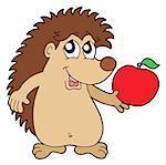 Hedgehog with apple - vector illustration.
