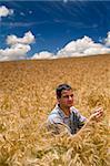 farmer sitting in a wheat field