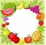 vecor illustration of a fruit card