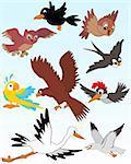 Set of vector illustrated birds - kid style