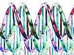 DNA molecules, artwork