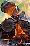 Closeup view of burning logs in a bonfire