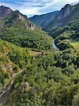 Tara river gorge in Montenegro mountains