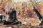 Buddha statues damaged in Ayutthaya
