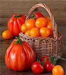 Fresh garden tomatoes in a wicker basket.