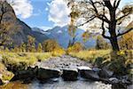Ruisseau de montagne en automne, Grosser Ahornboden, Karwendel, Tyrol, Autriche
